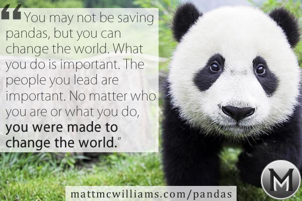 Rescuing Pandas