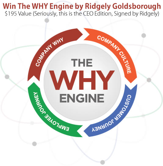 The Why Engine by Ridgely Goldsborough