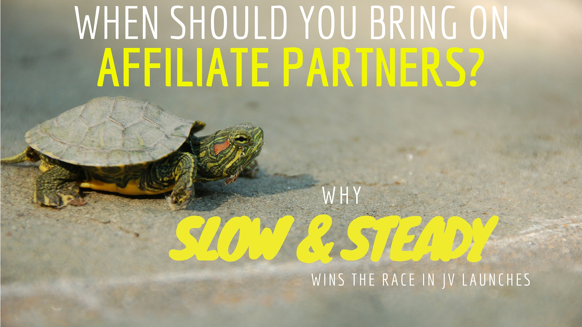 When should you bring on affiliate partners